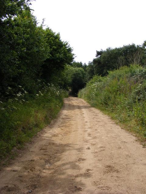 Angles Way approaching Wadding Wood