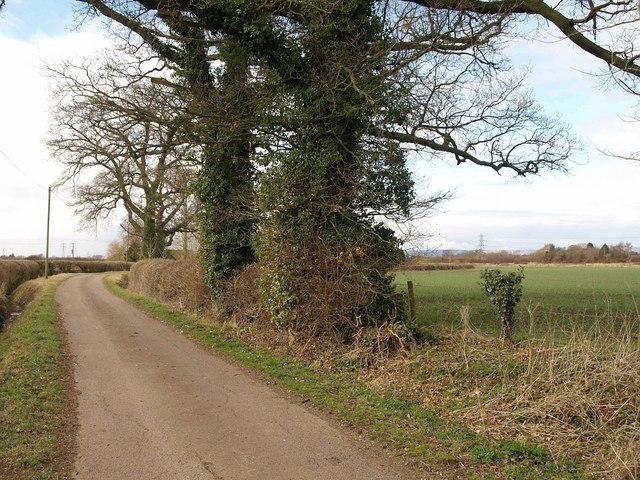 Lane near Hardwicke