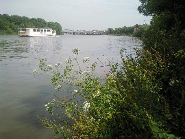 Riverside at Mortlake