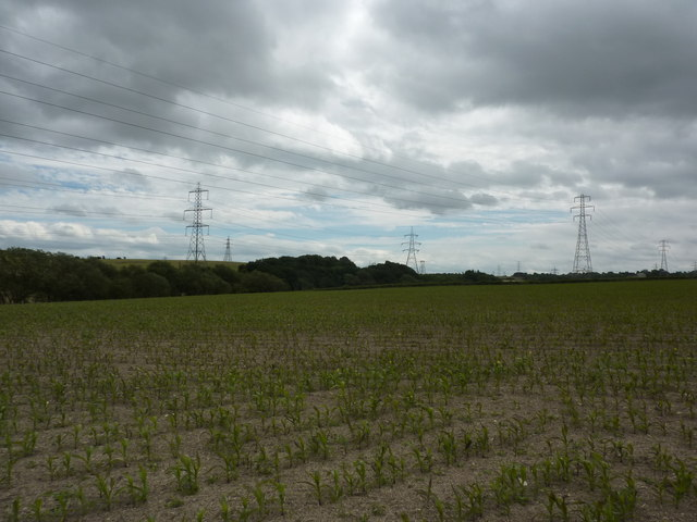 Pylons over a field of corn