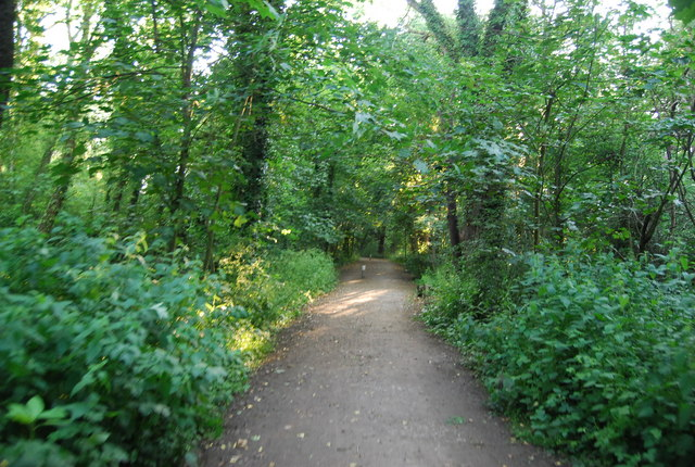 The Wealdway, the Eden Valley walk and National Cycleway 12 all combined