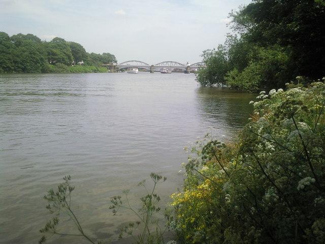 River Thames at Barnes