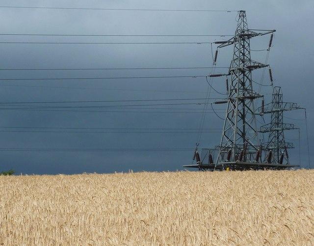 Barley field and pylon