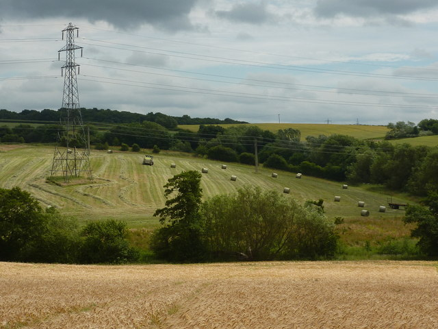 Barley field, silage making, and power lines