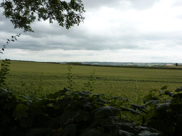 From Back Lane, Calow Green