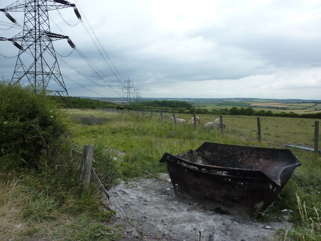 Burnt out skip, cattle and pylons