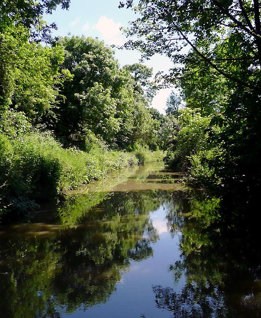 The Ashby Canal near Whitestone, Warwickshire