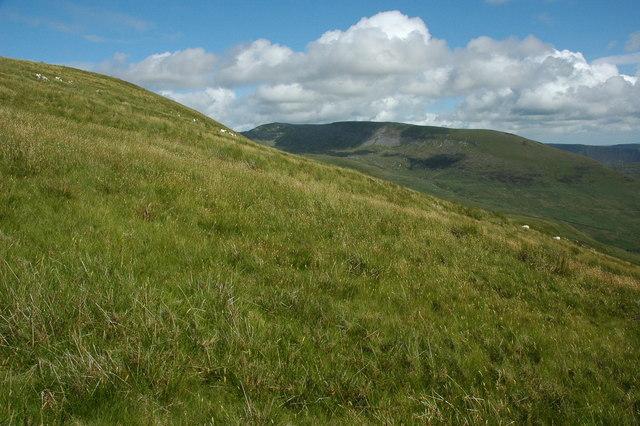 Southern slopes of Tyrrau Mawr