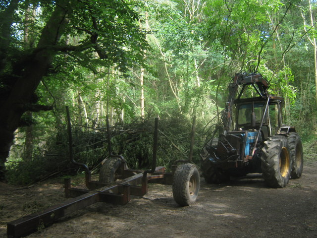 Coppicing Tractor and trailer