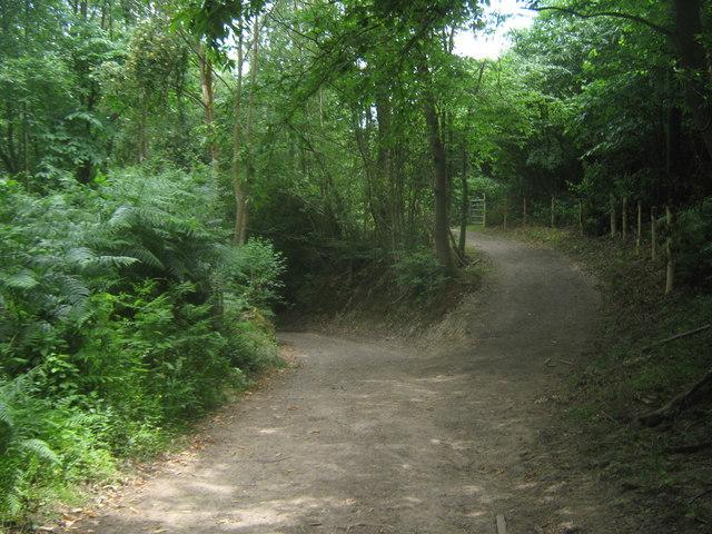 Bridleway junction near Greybury Farm
