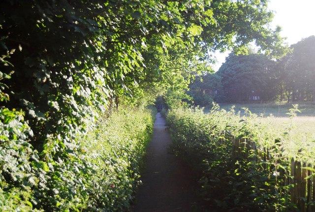 Footpath to Powder Mills