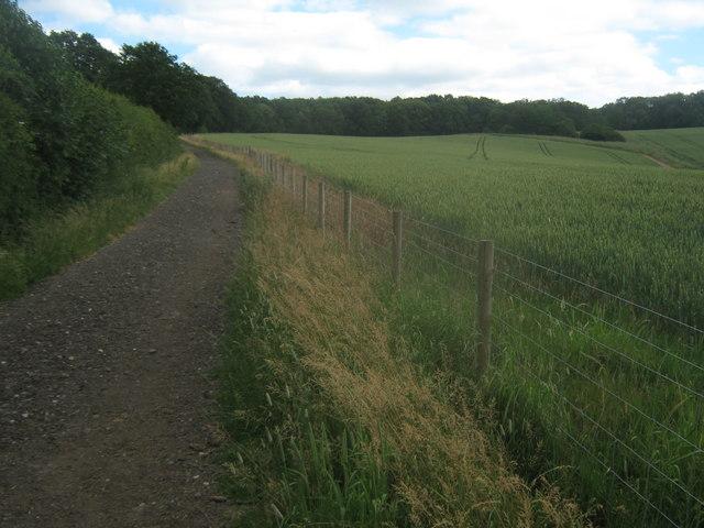 Bridleway to Smokey Wood