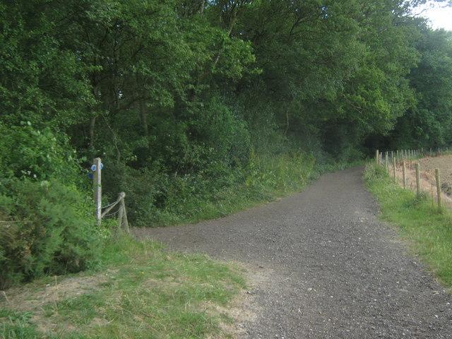 Bridleway junction near Smokey Wood