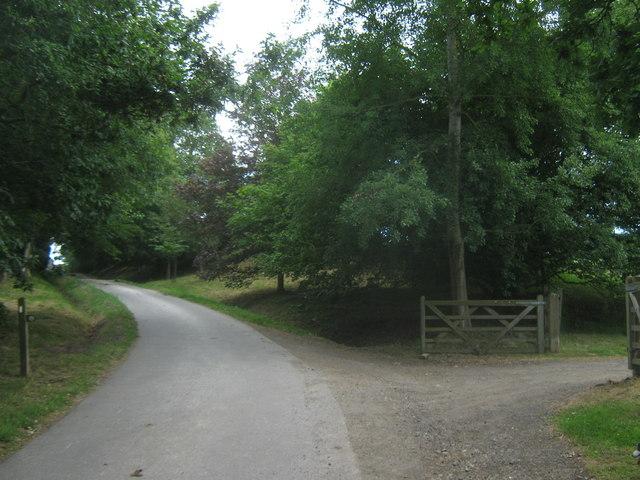 Bridleway junction near Crippenden Manor