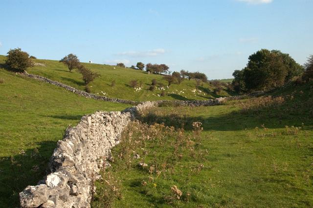 Path through Bagshaw Dale