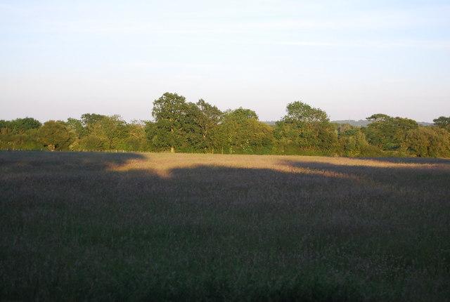 Rural scene near Powder Mills