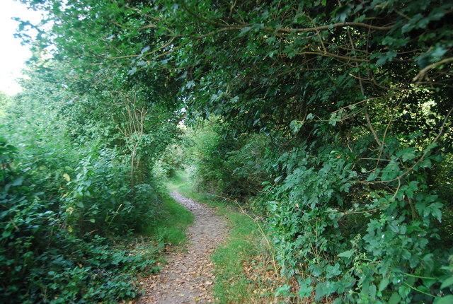 Footpath in Sevenoaks Weald