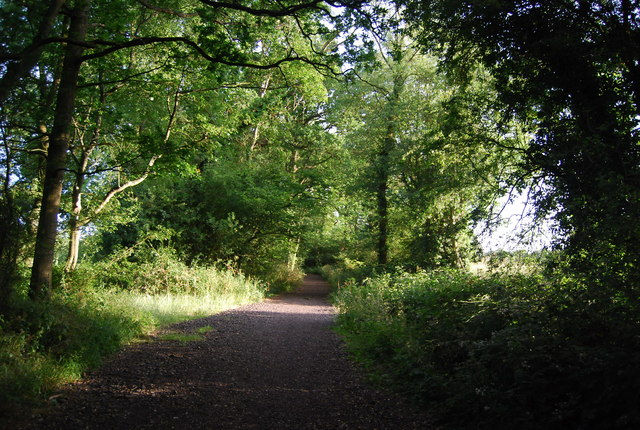 Wooded byway open to all traffic, south of Weald