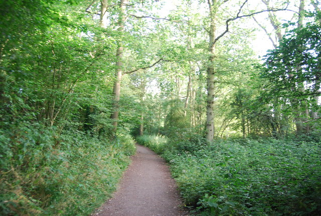 Byway open to all traffic, south of Weald: heading south