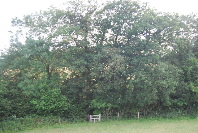 Stile in the trees near New House Farm