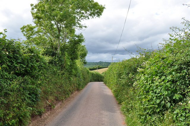 Mid Devon : Countryside Road