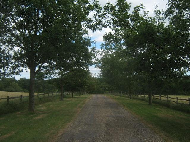 Leighton Manor Driveway