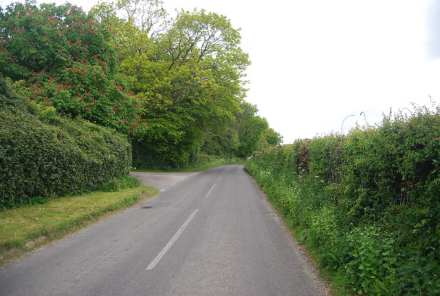 Treeman Rd, northwards