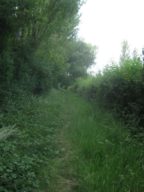 Footpath towards Jones's Wood
