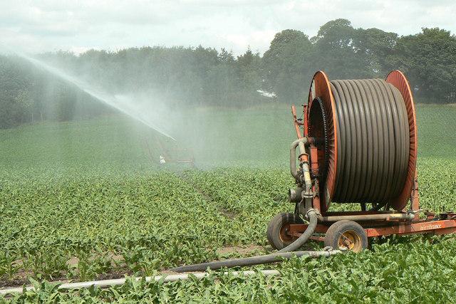 Irrigation near Hilltop Farm