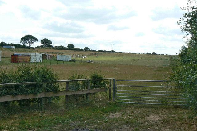 Paddocks near Twelve Acre Farm