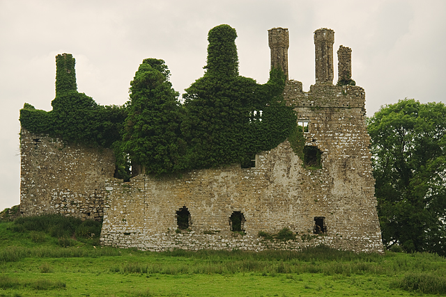 Castles of leinster carbury kildare mike searle cc by for Kildare castle