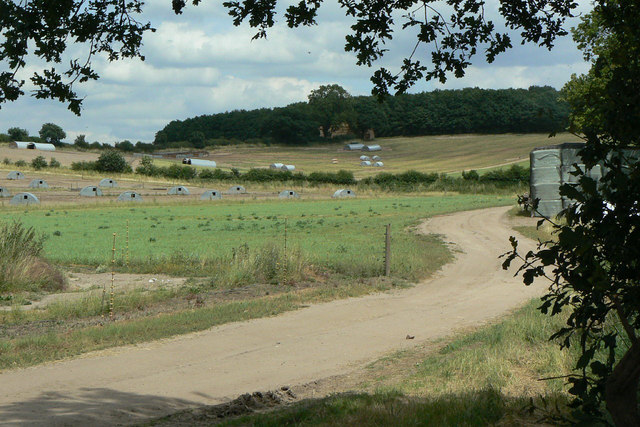 Near Hilltop Farm