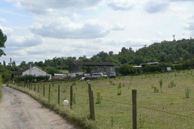 Twelve Acre Farm