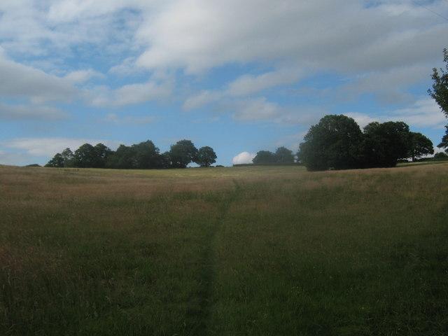Footpath towards to Harnett Claydene Farm
