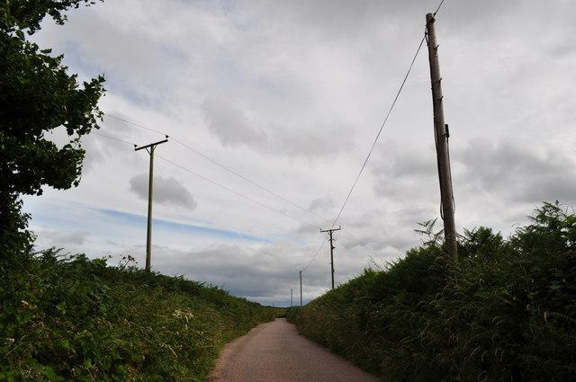 Mid Devon : Country Road & Telegraph Poles