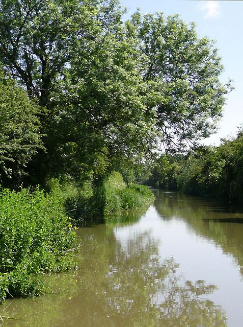 The Ashby Canal north of Bulkington, Warwickshire