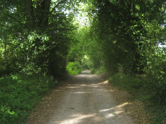 Footpath towards Markbeech