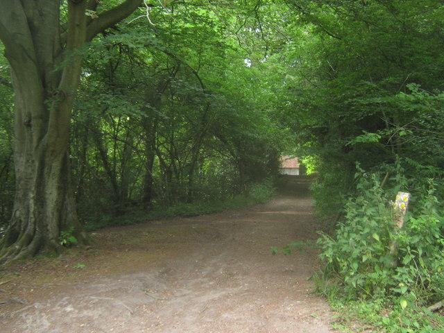 Footpath near Hole Cottage