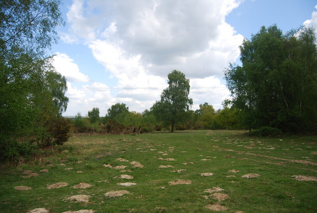 Mole hills, Lane End Common