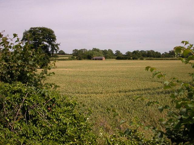 Farmland Near Long Buckby Wharf