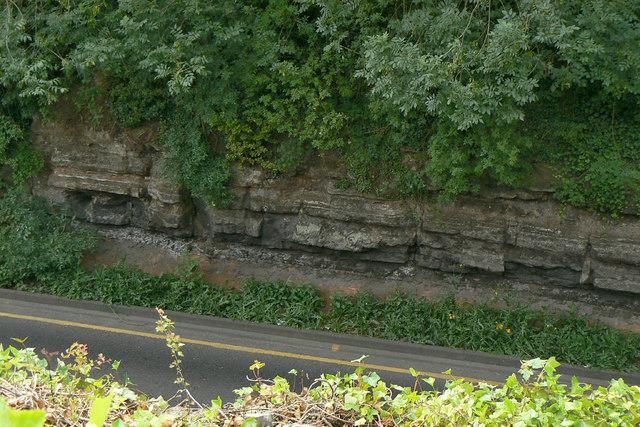Geological exposure