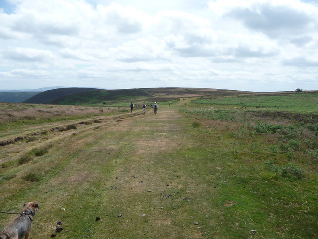 Pathway on the Long Mynd