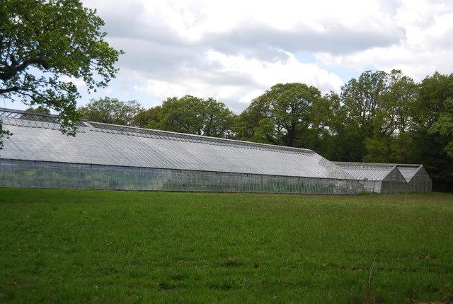 Glasshouse, Plants4presents