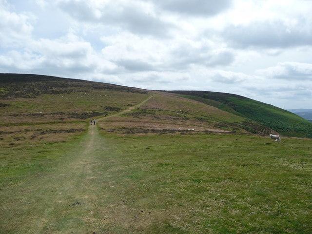 The Cross Dyke on the Long Mynd