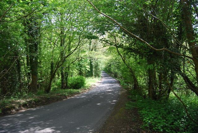 Newick Hill