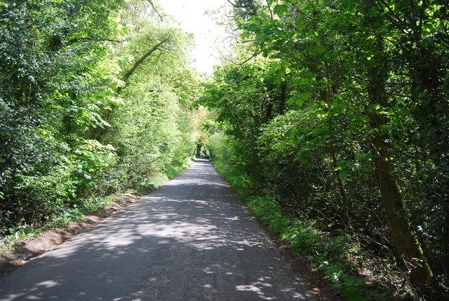 Going up Newick Hill
