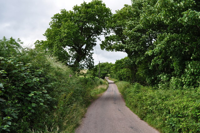 Mid Devon : Countryside Road