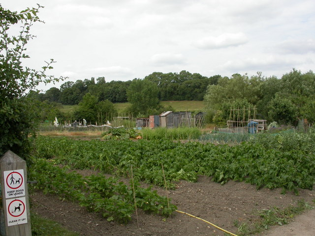 Upper Brailes, allotments