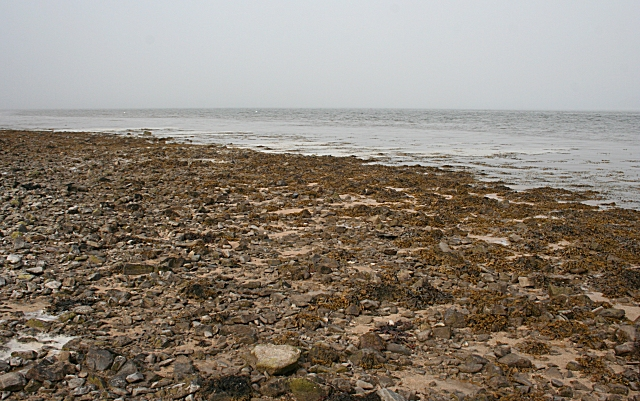 Shore at High Tide