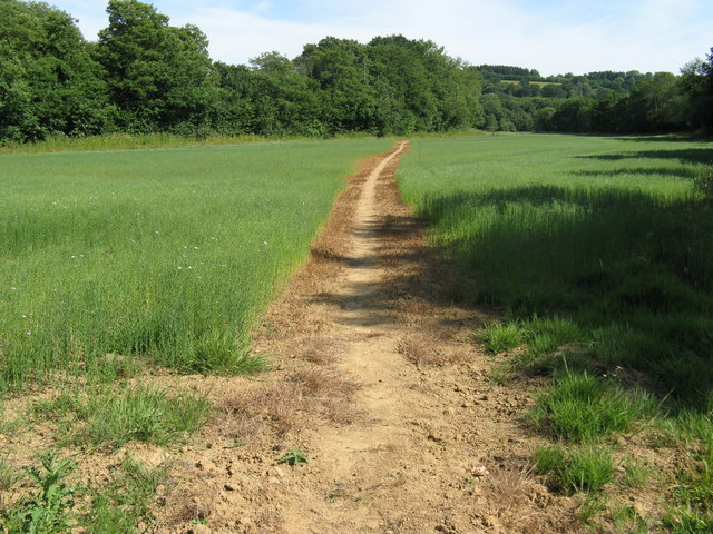 Clearly defined footpath across field to Coes Rough